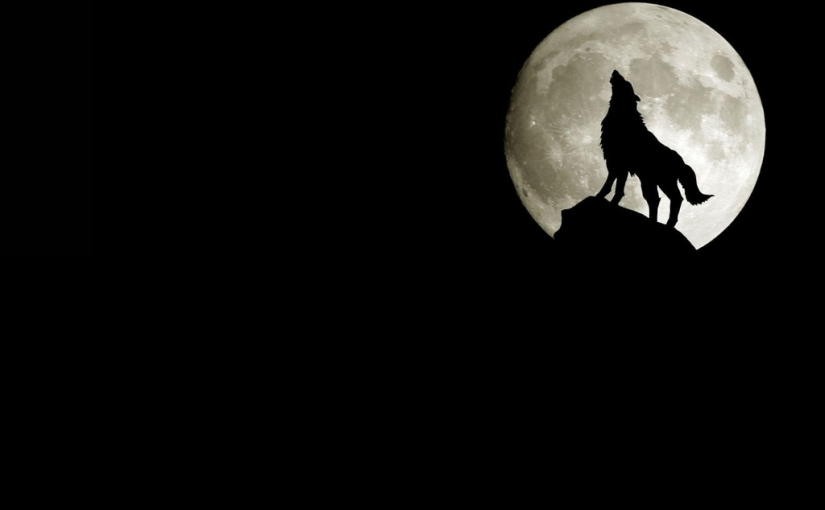 Japan: Stop Howling,Act!
