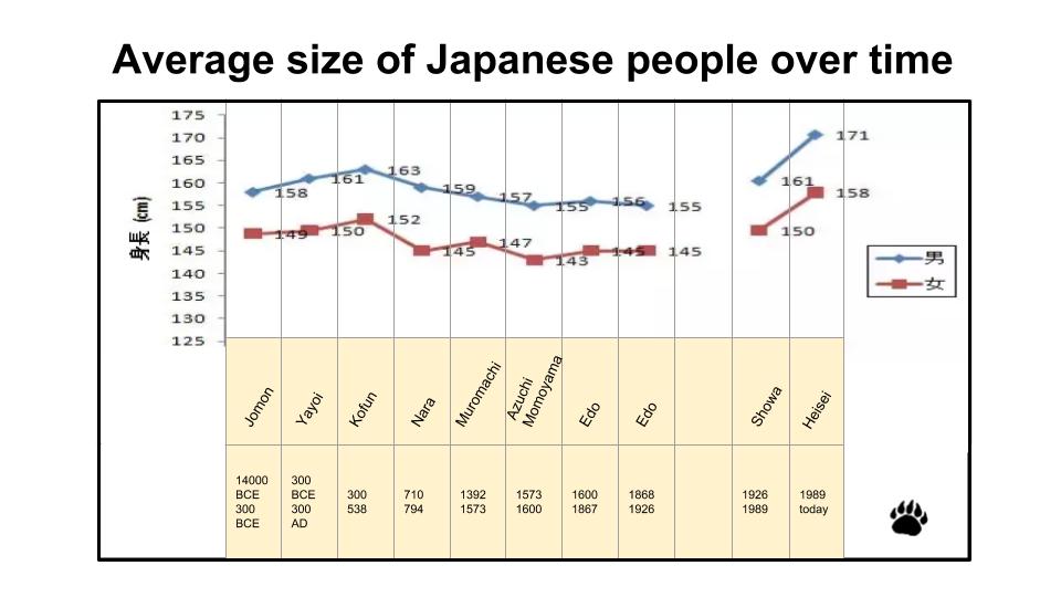 size jp